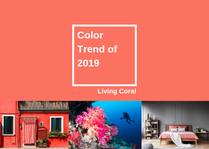 Color Trends of 2019